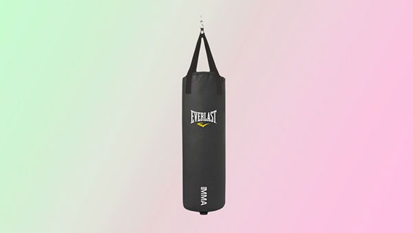 Everlast 100磅重袋,手套和固定价值捆绑包