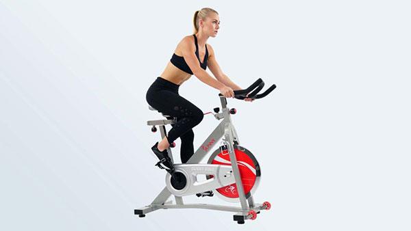 Sunny Health&Fitness室内健身车