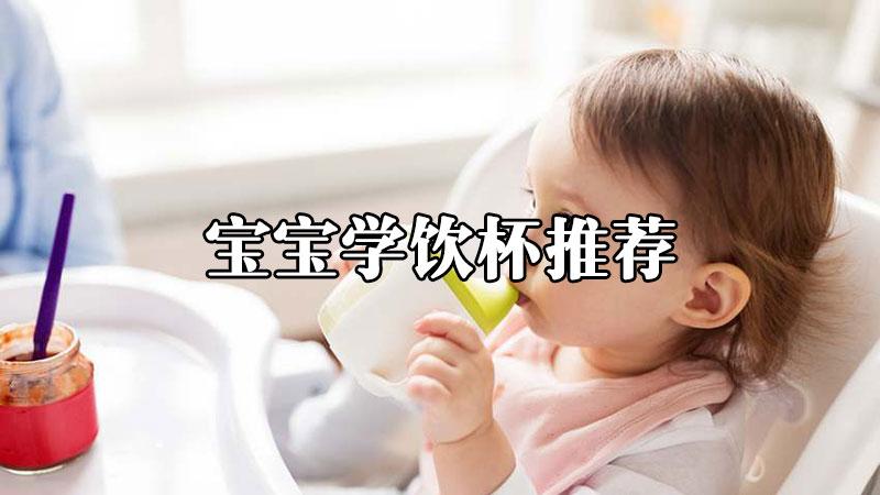 2021年性价比高的宝宝学饮杯推荐